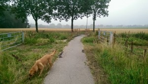 Blokje om vanaf Oppe Winckel, het Varjsterweigske